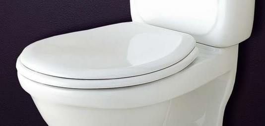 90739 Standard toilet seat for a Svedbergs 9070 toilet
