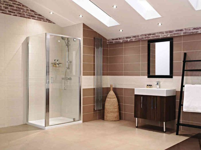 Roman Lumin8 1000 Pivot Shower Door V8F1013S