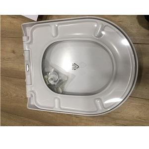 RAK Tonique D Shape Replacement Soft Close Toilet Seat