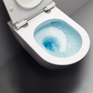 GSI Sand 55/f Rimless Wall Hung Swirl Flush Toilet Pan And Seat-13752